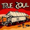 True Soul Vol. 1 & 2:  Various Artists