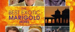 FILM: The Best Exotic Marigold Hotel