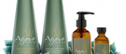 Agave Smoothing Shampoo and Conditioner
