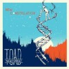 Toad the Wet Sprocket:  New Constellation