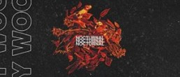 Roy Woods: Nocturnal