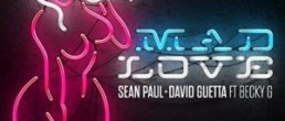 Sean Paul: Mad Love
