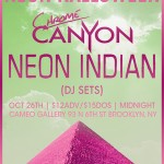 Neon Indian DJ set